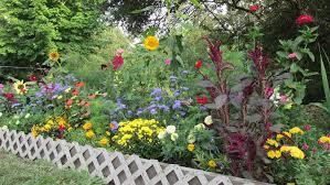 grow your own cutting garden in as little as 32 square feet michigan gardening