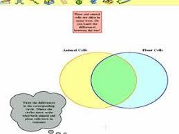 Kidspiration Venn Diagram Inspirationandkidspiration Sojomood1