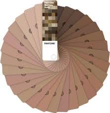 Graphics Pantone Skintone Guide 100 Real Skin Colors
