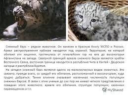 Презентация на тему Снежный барс хищник из Красной книги  5 Снежный