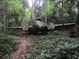 plane crash in the jungle essay moliets com plane crash in the jungle essay