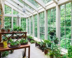 patio enclosures conservatories plants size