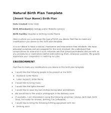 How To Make Your Birth Plan 47 Printable Birth Plan Templates Birth Plan Checklist
