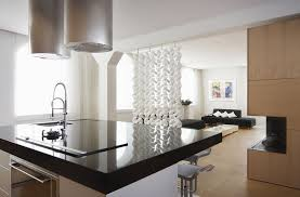 ceiling mounted living room dining room divider in kitchen
