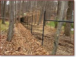black welded wire fence. TNT Fence Co. Offers Deer Fencing To Help You Protect Your Landscape Investment. We Feature A Sturdy 8 Foot High Black Welded Wire Mesh Installed On C