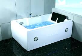 two person bathtub 2 indoor tub shower combo