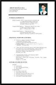 How To Write A Resume With No Job Experience Impressive Job Experience On Resume Sample No Job Experience Resume