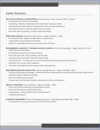 Professional Resumes Service Examples Free Resume Professional