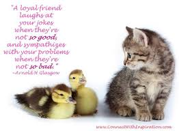 Loyal Friend Quotes Unique A Loyal Friend Laughs At Your Jokes When They're Not So Good And