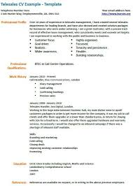 Telesales Cv Example Work Pinterest Cv Examples And Management
