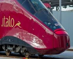 Risultati immagini per Hostess e Steward sui treni