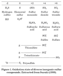 Sulfur In Agriculture