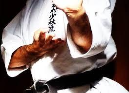 Risultati immagini per Kata del karate