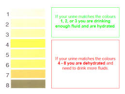 Hydration Color Chart Stay Hydrated This Summer Strive 2 Survive Brown Clinic