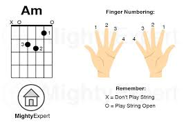 Electric Guitar Finger Chart How To Play A Minor Am Chord On Guitar Finger Positions
