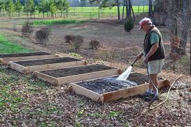 garden bed kit. Raised Garden Beds Conserve Water And Are Easy To Manage Bed Kit