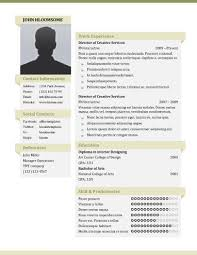 Cool Resume Templates 3669