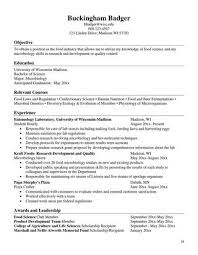 resume book resume book by career services issuu