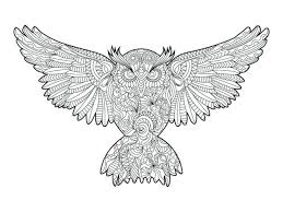coloring pages owl coloring book for s vector stock ilration of anti drawing owls dover