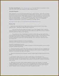 High Level Business Plan Template Unique 84 Fertig Briefbogen