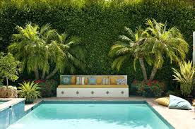 low maintenance plants for central florida the best plants for poolside landscaping best low maintenance plants