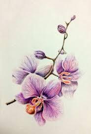 ženské Tetování Na Ruce Květiny Co Znamená Tetování Květin