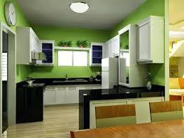 green cabinets black countertops amazing decoration