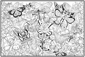Free Adult Printable Butterfly Coloring Page Coloring Page For
