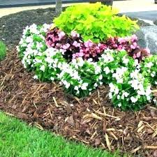 pine bark nuggets nugget ch home depot large mini near mulch nugge pine bark mulch home depot