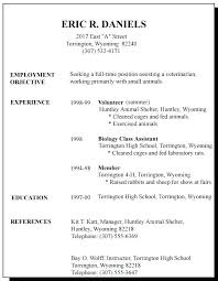 Resume With Little Work Experience Sample Beauteous Resumes Examples For Jobs Summer Job Resume Examples Examples Of