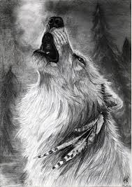 white wolf howling drawing.  Wolf Sketch Of Wolf Howling Drawing Pencil  Drawingvilkupl On Intended White W