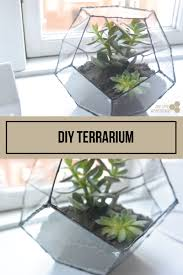 diy terrarium geometric terrarium with a step by step guide the tiny honeycomb