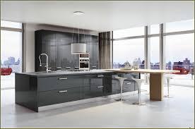 Kitchen Cabinets Miami Italian Kitchen Cabinets Chicago Design Porter