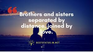 Best 20 Brother And Sister Quote Funny Minions Memes