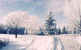 winter backgrounds for desktop tumblr.  Desktop 1920x1200 Winter Wonderland Desktop Backgrounds  Wallpaper Cave  Download  1600x1200  With For Tumblr R