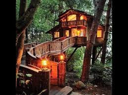 Awesome tree houses decor