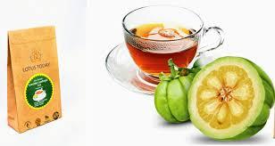 details about burn fat tea strong weight loss garcinia plus herbal t slimming detox 60bag