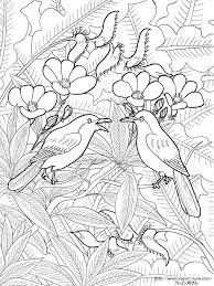 バリ絵画の花鳥画の塗り絵の下絵画像