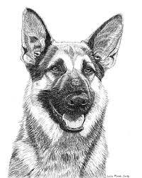 dog drawing.  Dog Sullivan AKA Sully German Shepherd On Dog Drawing U