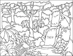 Waterfall Woods Nature Coloring Pages Print Coloring