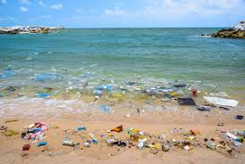 Image result for plastic beach