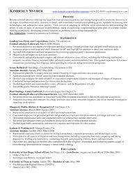 Sample Resume Contract Attorney Document Review Save Adorable Sample
