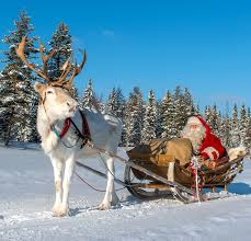 santa claus and reindeer. Simple Santa Santa Clausu0027 Reindeer Sleigh Ride At Ritavaara In Pello Lapland  Travel  Lapland Finland And Claus Reindeer U