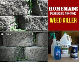 vodka weed killer recipe