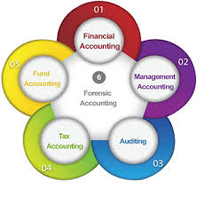 accounting assignment help experts assistance for accounting tax accounting assignment writing help online