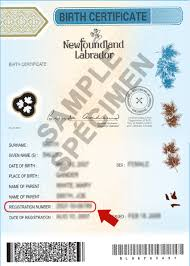 The state or territory issued birth certificate is a secure a4 paper document, generally listing: Where Is My Status In Canada Document Number