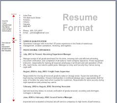 What Should A Resume Include Adorable Resume Latest Format Beauteous Company Resume Format 48 R 48