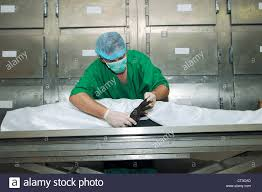 forensic pathologist a forensic pathologist stock photos a forensic pathologist stock