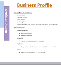 Company Profile Format Sample Beauteous Information Technology Company Profile Template Strategic Plan