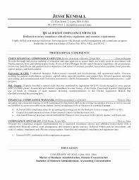 Social Compliance Auditor Sample Resume Enchanting 44 Greatest Stock Sample Resume For Finacial Compliance Auditor